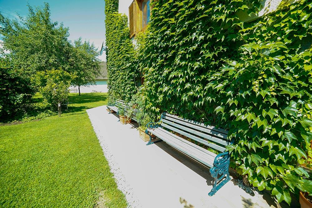 Gästehaus Huss - Sitzbänke mit bewachsener Hauswand