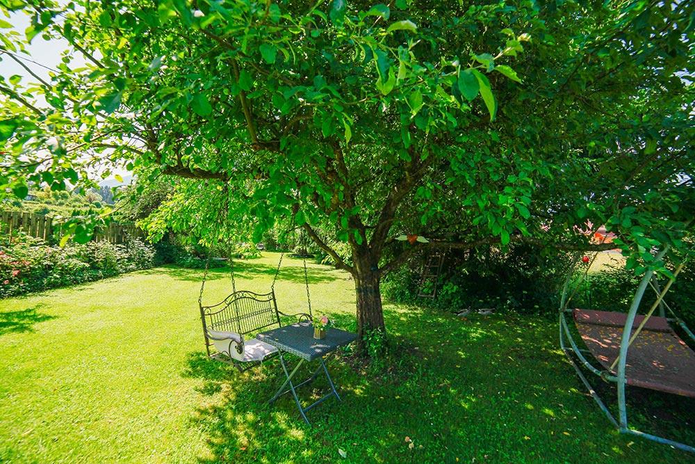 Gästehaus Huss - Baum mit Schaukel im Garten