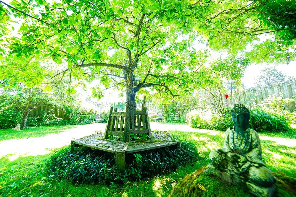 Gästehaus Huss - Sitzbank unter Baum mit Buddha Statue